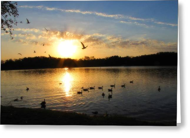 Geese Silhouette Greeting Cards - Birds of a Feather Greeting Card by Scott Hovind