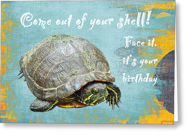 Mother Nature Greeting Cards - Birthday Card - Painted Turtle Greeting Card by Mother Nature