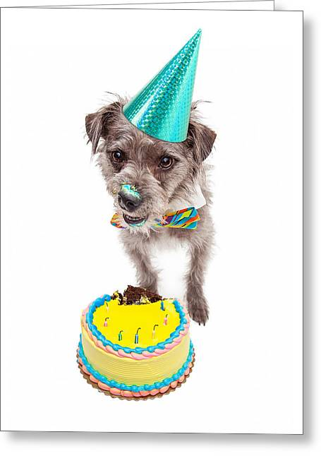 Party Hat Greeting Cards - Birthday Dog Eating Cake Greeting Card by Susan  Schmitz
