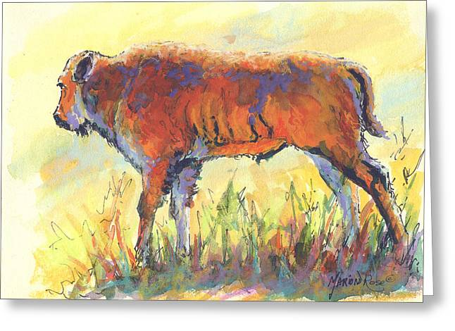 Bison Calf Greeting Card by Marion Rose