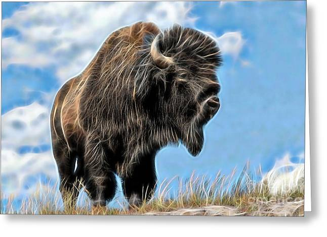 Bison Greeting Cards - Bison Collection Greeting Card by Marvin Blaine
