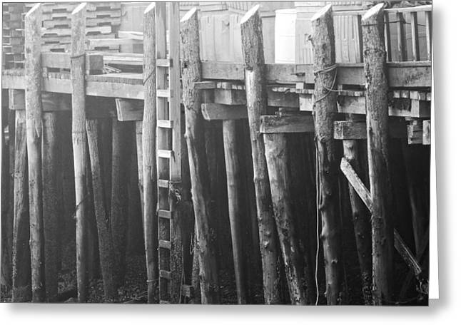 Coastal Maine Greeting Cards - Black and White of Fog And Dock At Low Tide On Coast Of Maine Greeting Card by Keith Webber Jr