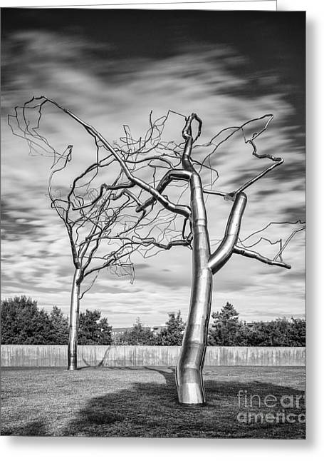 Black And White Photograph - Roxy Paine - Conjoined At The Museum Of Modern Art - Fort Worth Texas Greeting Card by Silvio Ligutti