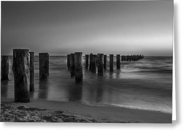 City Lights Greeting Cards - Black and White Pier Greeting Card by Frank Molina