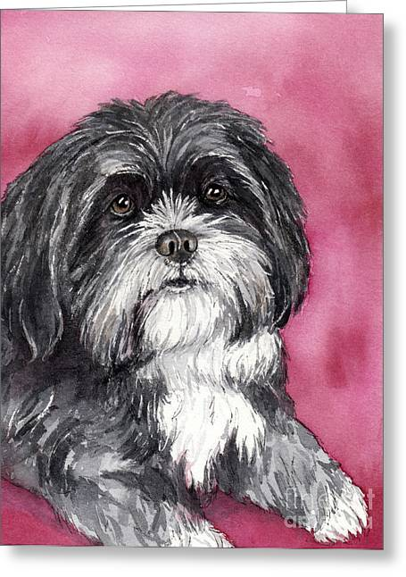 Pen And Ink Portraits Greeting Cards - Black and White Shih Tzu Greeting Card by Cherilynn Wood