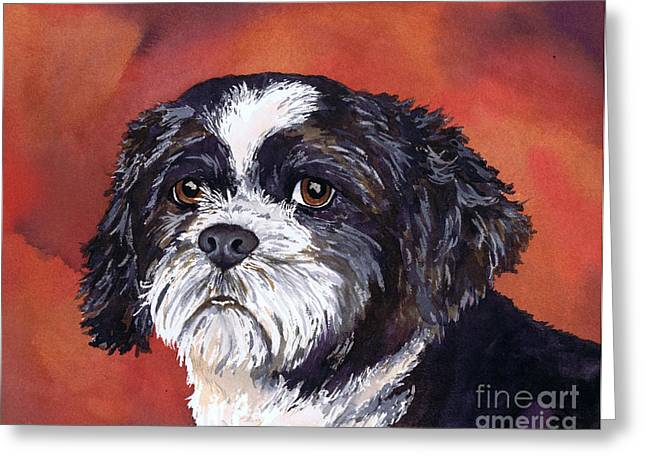 Portraits Of Pets Greeting Cards - Black and White Shih Tzu on Red Greeting Card by Cherilynn Wood