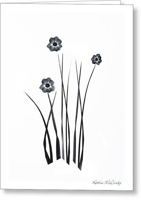 Pressed Flowers Greeting Cards - Black and White Simplicity Greeting Card by Kathie McCurdy