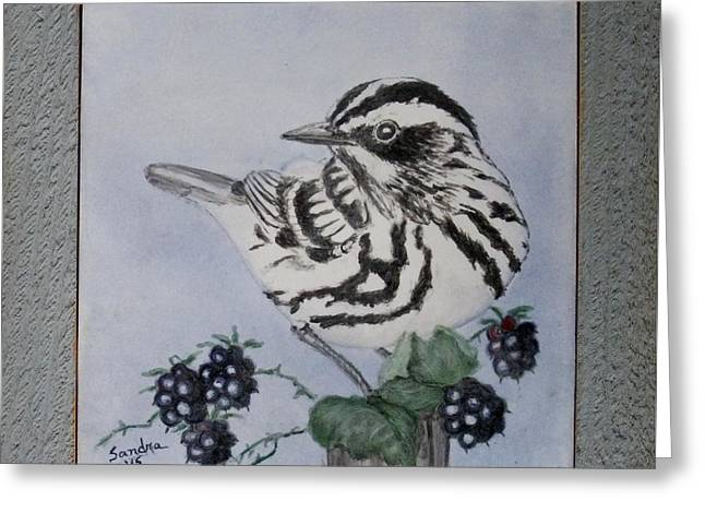 Birds Ceramics Greeting Cards - Black and White Warbler Trivet Greeting Card by Sandra Maddox
