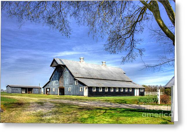 Tin Roof Greeting Cards - Black Beauty Historic Barn Hopkinsville Kentucky   Greeting Card by Reid Callaway