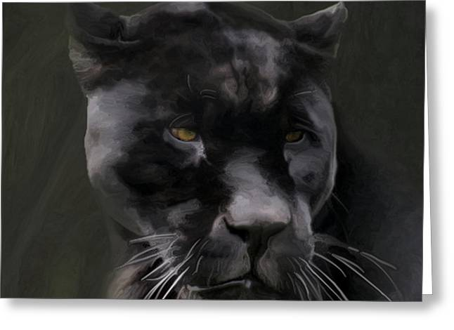 Black Beauty Greeting Card by Vic Weiford
