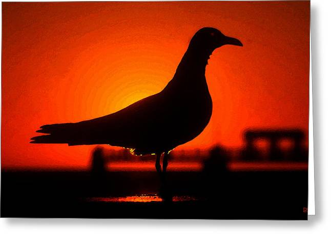 Seaside Digital Greeting Cards - Black bird Red sky Greeting Card by David Lee Thompson