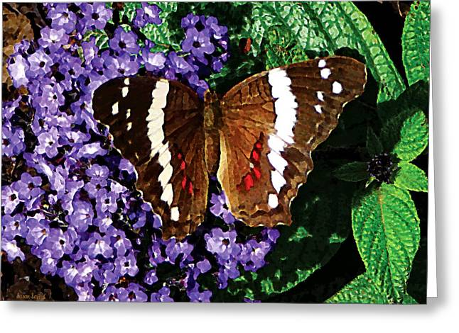 Butterflies Greeting Cards - Black Butterfly on Heliotrope Greeting Card by Susan Savad