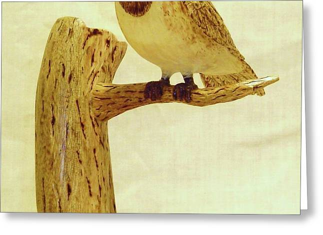 Black-Capped Chickadee Greeting Card by Russell Ellingsworth