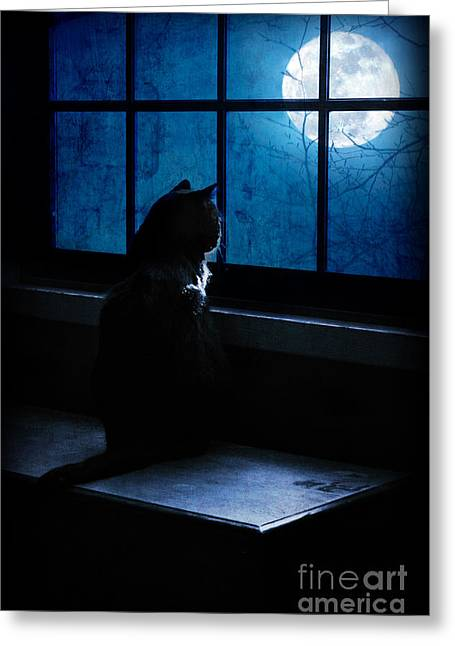 Harvest Moon Mixed Media Greeting Cards - Black Cat Moon Greeting Card by Megan Noble