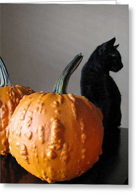 Hallows Eve Greeting Cards - Black Cat Silhouette  Greeting Card by Lindie Racz