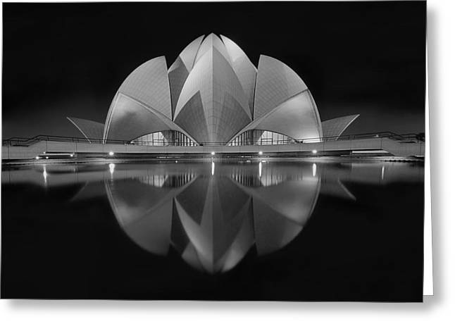 Lotuses Greeting Cards - Black Contrast Greeting Card by Nimit Nigam