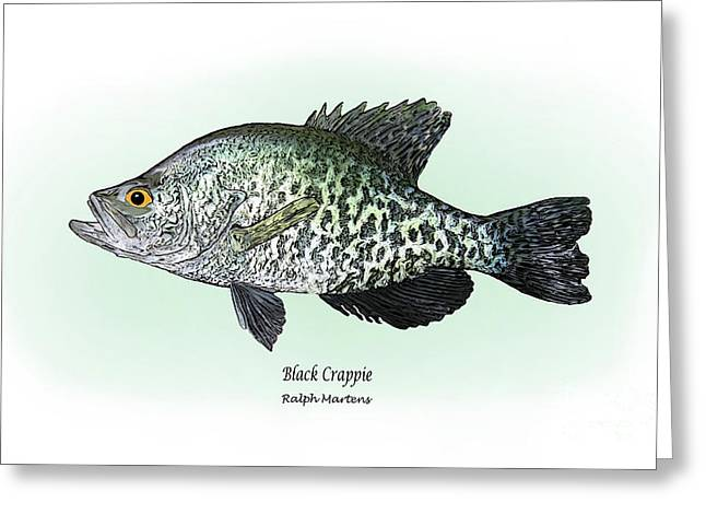 Angling Drawings Greeting Cards - Black Crappie Greeting Card by Ralph Martens