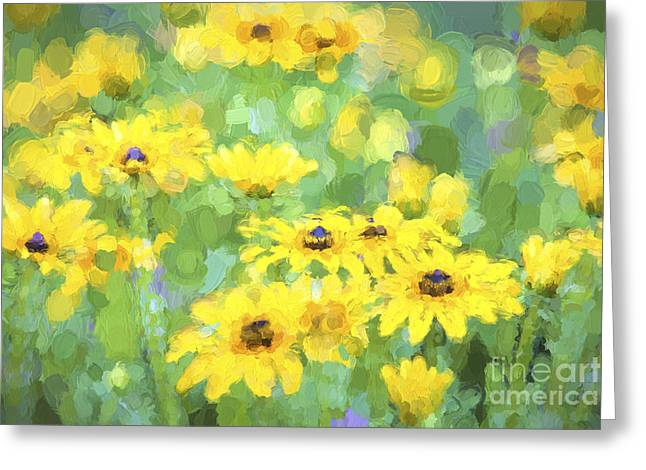 Color_image Greeting Cards - Black-Eyed Susans Abstract Greeting Card by Jan Tyler