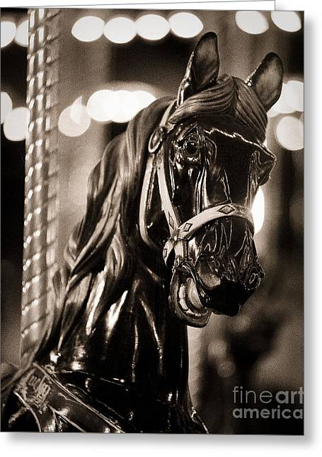 Texas Horse Greeting Cards - Black Knight of the Carousel Greeting Card by Sonja Quintero