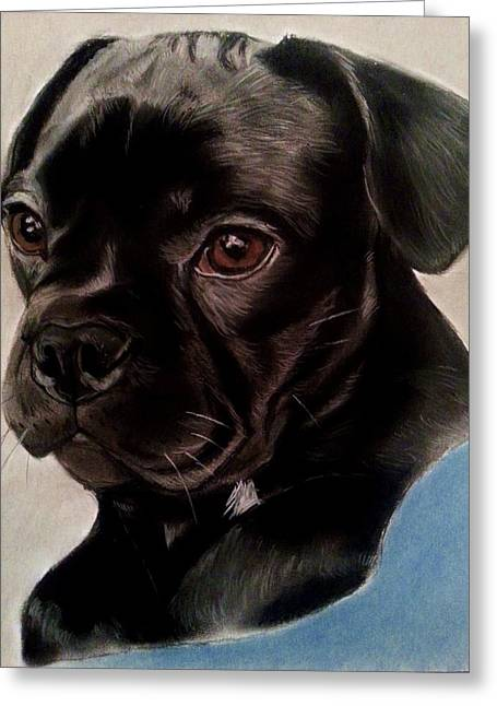 Puppies Pastels Greeting Cards - Black Labrador Puppy Greeting Card by Diane Leuzzi