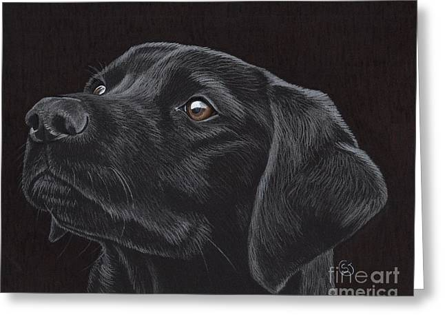 Doggies Greeting Cards - Black Labrador Retriever - Loyal Companion Greeting Card by Sherry Goeben
