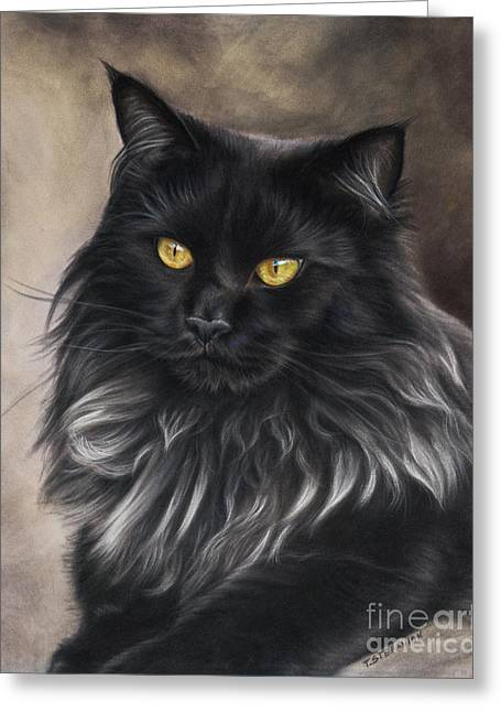 Maine Pastels Greeting Cards - Black Maine Coon Greeting Card by Tobiasz Stefaniak