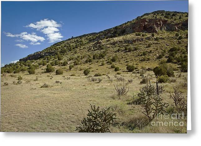 Black Mesa Greeting Cards - Black Mesa Territory Greeting Card by Fred Lassmann