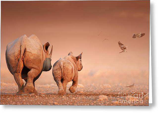 S-hooks Greeting Cards - Black Rhinos Greeting Card by Johan Swanepoel