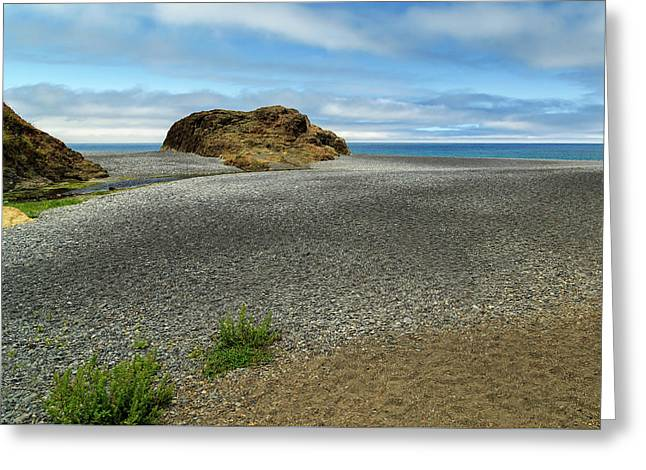 Black Sand Beach On The Lost Coast Greeting Card by James Eddy