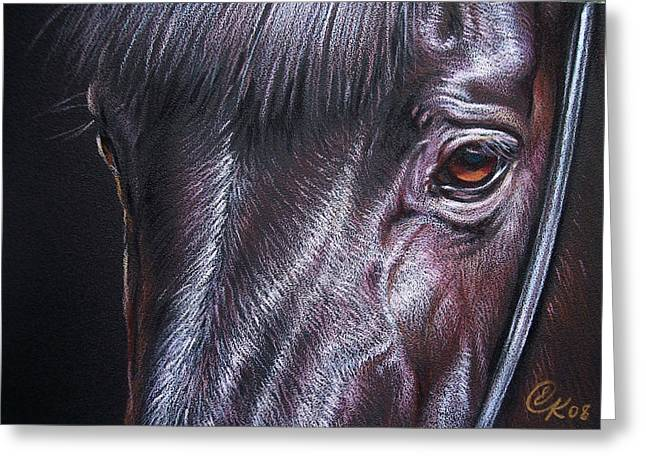 Horse Drawings Greeting Cards - Black stallion Greeting Card by Elena Kolotusha