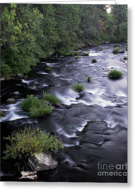 Soft Greeting Cards - Black Waters Greeting Card by Peter Piatt
