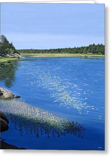 Lilly Pad Greeting Cards - Blackstone Bog Greeting Card by Kenneth M  Kirsch