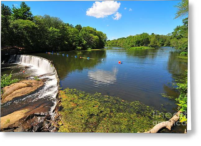 Blackstone Gorge Greeting Card by Catherine Reusch  Daley