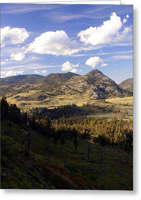 Blacktail Road Landscape Greeting Card by Marty Koch