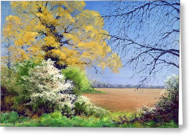 Oak Tree Paintings Greeting Cards - Blackthorn Winter Greeting Card by Anthony Rule