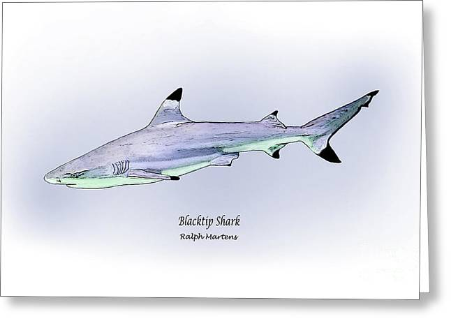 Fish Drawings Greeting Cards - Blacktip Shark Greeting Card by Ralph Martens