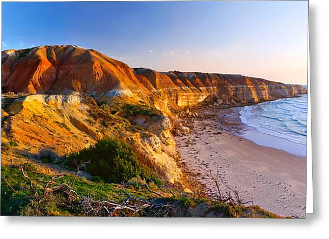 Fleurieu Greeting Cards - Blanche Point Greeting Card by Bill  Robinson