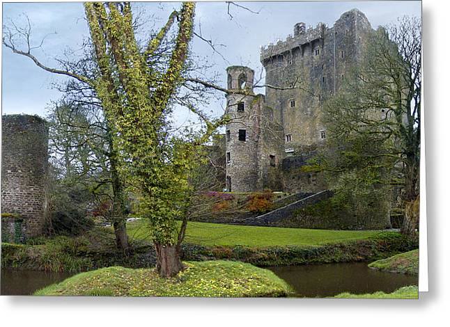 Stones Greeting Cards - Blarney Castle 3 Greeting Card by Mike McGlothlen