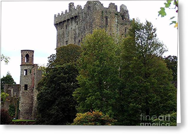Blarney Estate Greeting Card by RL Rucker