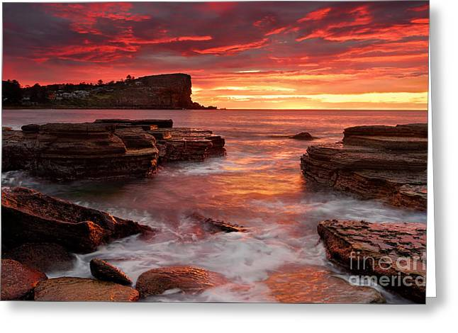 Geology Photographs Greeting Cards - Blazing sunrise from Avalon Beach Australia Greeting Card by Leah-Anne Thompson