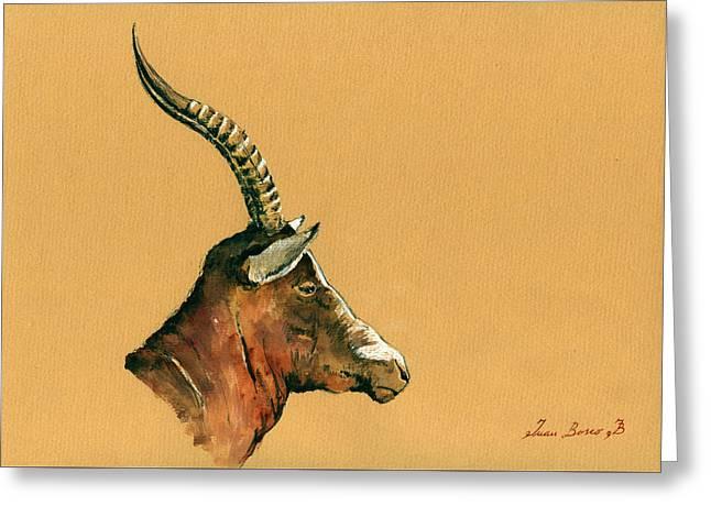 Blesbok Greeting Card by Juan  Bosco