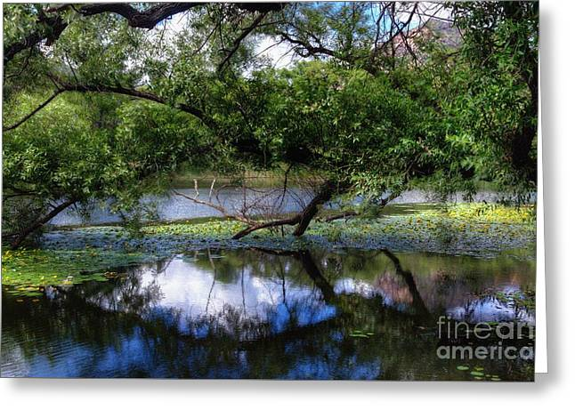 Prescott Greeting Cards - Blessings by Nature Greeting Card by Thomas  Todd