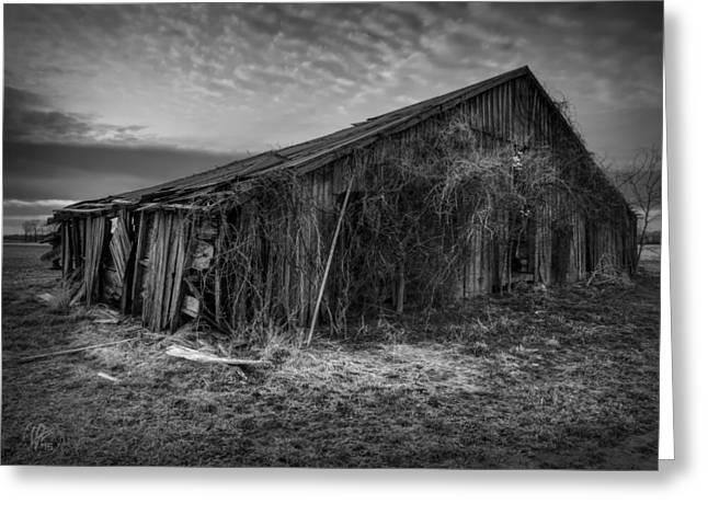 Tn Barn Greeting Cards - Blighted Barn 002 BW Greeting Card by Lance Vaughn