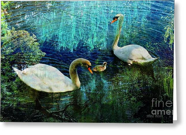 Swans... Greeting Cards - Bliss Greeting Card by Doria Fochi