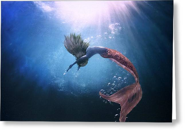 Underwater Photos Paintings Greeting Cards - Bliss Greeting Card by Jacqueline Tracy