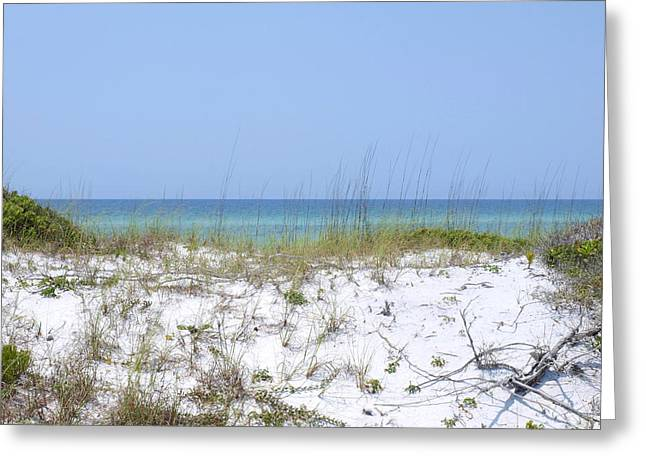 Destin Greeting Cards - Blissful Dune Greeting Card by James Granberry