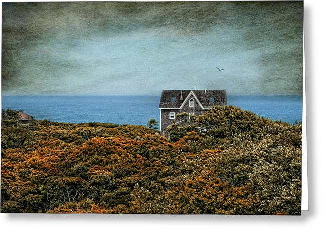 Robin-lee Greeting Cards - Block Island Bliss Greeting Card by Robin-lee Vieira