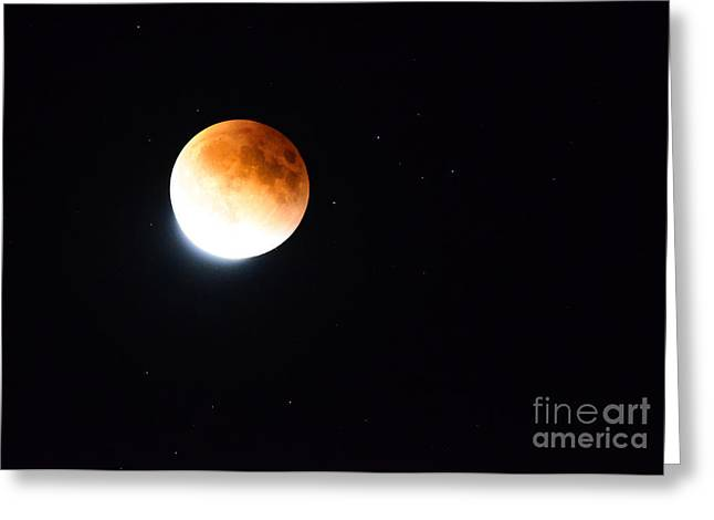 Greeting Cards - Blood Moon 2015 Greeting Card by Bob Christopher