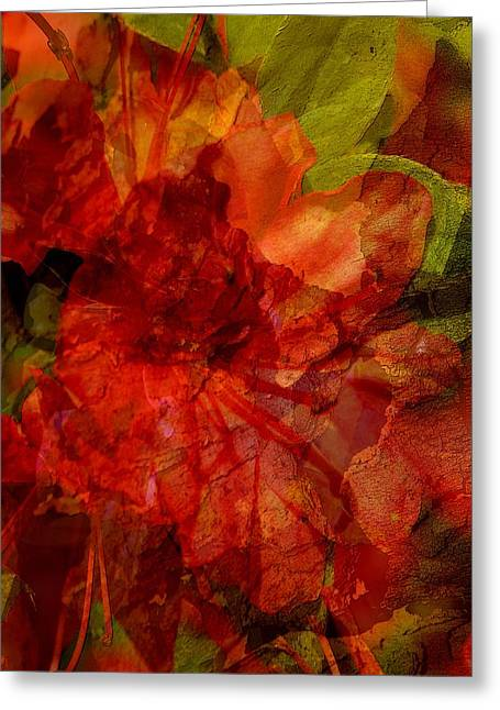 Abstract Nature Digital Greeting Cards - Blood Rose Greeting Card by Tom Romeo