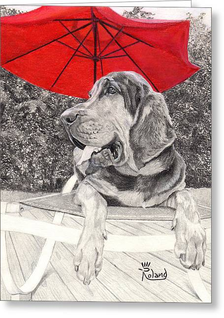 Dog Under Chair. Greeting Cards - Bloodhound Under Umbrella Greeting Card by Tracy Roland